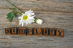 Vintage letterpress type and daisy Royalty Free Stock Image