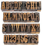 Vintage letters and numbers in wood type. Isolated rows of letters and numbers in vintage letterpress wood type blocks, French Clarendon font popular in western Stock Image