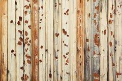 Vintage light beige  wooden background. Old boards. Wooden background. Stock Images