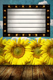 Vintage Light box program board with sunflower background Stock Images
