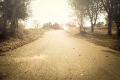 Vintage light of country road. Stock Photo