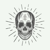 Vintage line skull in retro style. Vector illustration. Royalty Free Stock Images