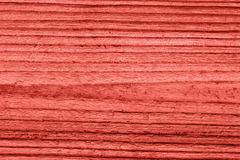 Vintage living coral wood texture. Abstract background royalty free stock photos