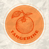 Vintage logo of tangerine Stock Images