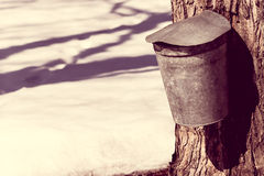 Vintage look covered maple syrup sap bucket with snow Royalty Free Stock Image