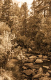 Vintage look pictures of Jemez River in New Mexico Royalty Free Stock Photography