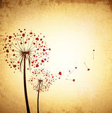 Vintage Love Dandelions Royalty Free Stock Photos