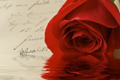 Vintage love letter reflections. Red rose on vintage letter in German with reflections in water royalty free stock photography