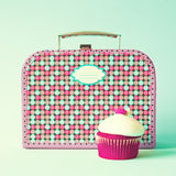 Vintage lunchbox Royalty Free Stock Photo