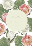 Vintage and luxurious floral vector greeting card with flowers i Royalty Free Stock Image