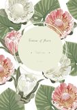 Vintage and luxurious floral vector greeting card with flowers i Stock Photos