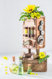 Vintage machine to make oil with sunflower and seeds Stock Image