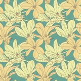 Vintage magnolia flowers seamless pattern Royalty Free Stock Photography