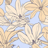 Vintage magnolia seamless pattern. Seamless vector pattern with magnolia on blue background Royalty Free Stock Image