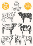 Vintage meat menu scheme beef cuts drawn vector Royalty Free Stock Photos