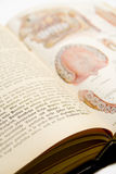 Vintage Medical Book Royalty Free Stock Photography