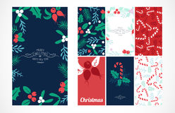 Vintage Merry Christmas And Happy New Year background set. Berries, sprigs and leaves stylish vector illustration on winter greeting card. Good for cards royalty free illustration