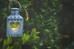 Vintage Metal Heart Shape Candle Holder Lit Burning Flame Hanging on Tree Branch in Garden. Valentine Mother`s Day Stock Image