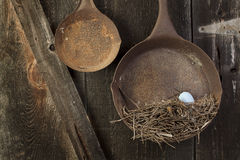 Vintage Metal Pans with Birdnest Royalty Free Stock Photos