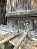 Vintage metal rake and hoe against the old wooden shed background. Agricultural tools. Vintage metal rake and hoe against the old wooden shed background royalty free stock photo