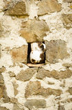 Vintage metalic pitcher in a niche. Detail of vintage metalic pitcher in a niche in stone wall Royalty Free Stock Photo