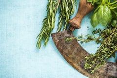 Vintage mezzaluna and fresh herbs. Copy space border background Royalty Free Stock Photo