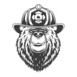 Vintage monochrome firefighting concept. With serious bear head in fireman helmet isolated vector illustration stock illustration