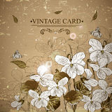 Vintage Monochrome Floral Card with Violets Royalty Free Stock Images