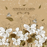 Vintage Monochrome Floral Card with Violets Royalty Free Stock Photos
