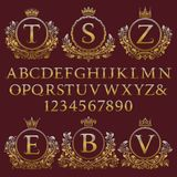 Vintage monogram kit. Golden letters, numbers and floral coat of arms frames for creating initial logo in antique style.  Stock Photography
