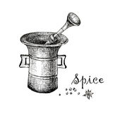 Vintage mortar and spice, hand drawn illustration Stock Photography