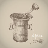 Vintage mortar and spice, vector hand drawn illustration Royalty Free Stock Photography