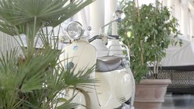 Vintage Motorbike in the Garden. Milano, Italy - June 15,207 : Vintage white vespa parked in front of the garden in Milano, Italy on June 15, 2017 stock video footage