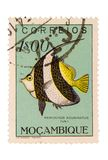 Vintage Mozambique Postage Stamp. On White Background Stock Image