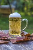 Vintage mug with light beer. On rustic background outdoors Stock Photography