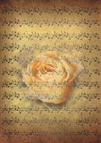 Vintage music notes with rose Stock Images