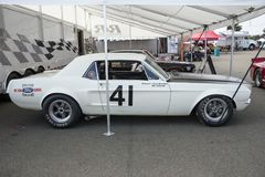 Vintage mustang coupe race car. Side view of white vintage ford mustang race car in display during the U.S vintage grand prix at watkins glen international sept stock photo