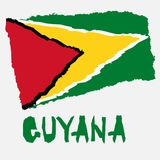 Vintage national flag of Guyana in torn paper grunge texture style. Independence day background. Isolated on white Good idea for r. Etro badge, banner, T-shirt vector illustration