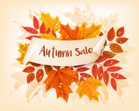 Vintage nature autumn sale background with colorful leaves. And rain drops Vector Royalty Free Stock Photo