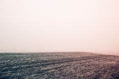 Vintage nature background. Black and white photography. Color toned image royalty free stock image