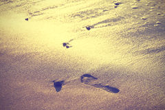 Vintage nature background, footprint on sand. Royalty Free Stock Images