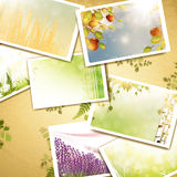 Vintage nature photos background Stock Photo