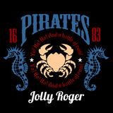 Vintage Nautical Labels or Design Elements With Retro Elements and Typography. Pirates, Harpoons, Mermaid, Sailfish, etc Stock Photos