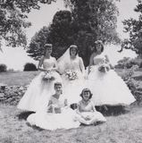 Vintage Nevr-Fade Photo -Bridesmaids year 1957 Wedding Party Photo stock images