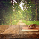 Vintage notebook and stack of wooden colorful pencils on wooden texture table in front of countryside forest view.  Royalty Free Stock Photography