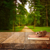 Vintage notebook and stack of wooden colorful pencils on wooden texture table in front of countryside forest view Stock Photography