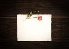 Vintage off-white paper with pretty pink dried rose on dark wood board background table.  Paper is blank for your copy, text, word royalty free stock photos