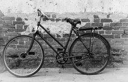 Vintage old bicycle Stock Photography