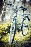 Vintage old bicycle in field. Royalty Free Stock Photos