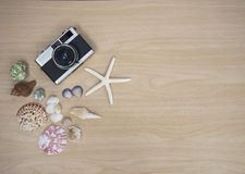 Vintage old camera with fish star and sea animal  on the wooden white Royalty Free Stock Photo